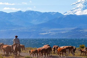 Voyage solidaire au Parc national de Tierra del Fuego