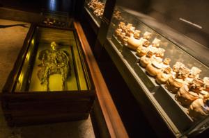 Musée National d'Archéologie, d'Anthropologie et d'histoiredu Pérou