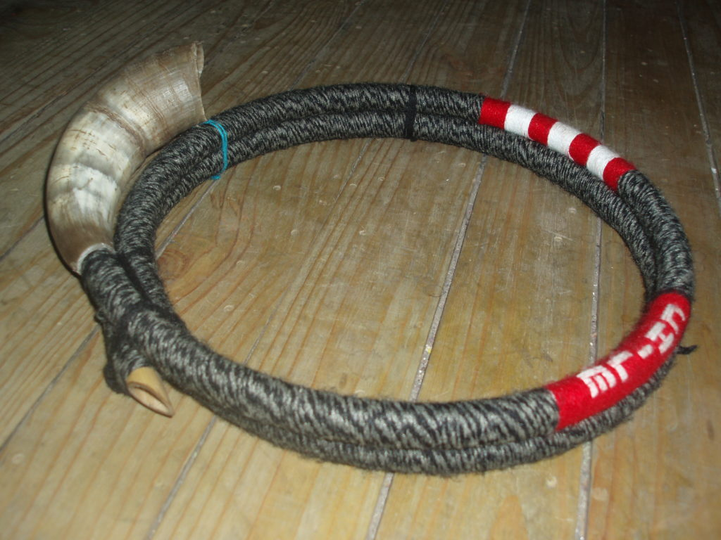 Instrument Mapuche