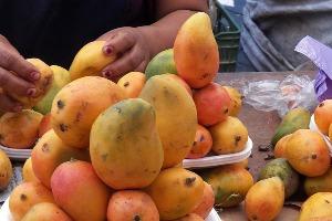 Mangos_criollos-oaxaca