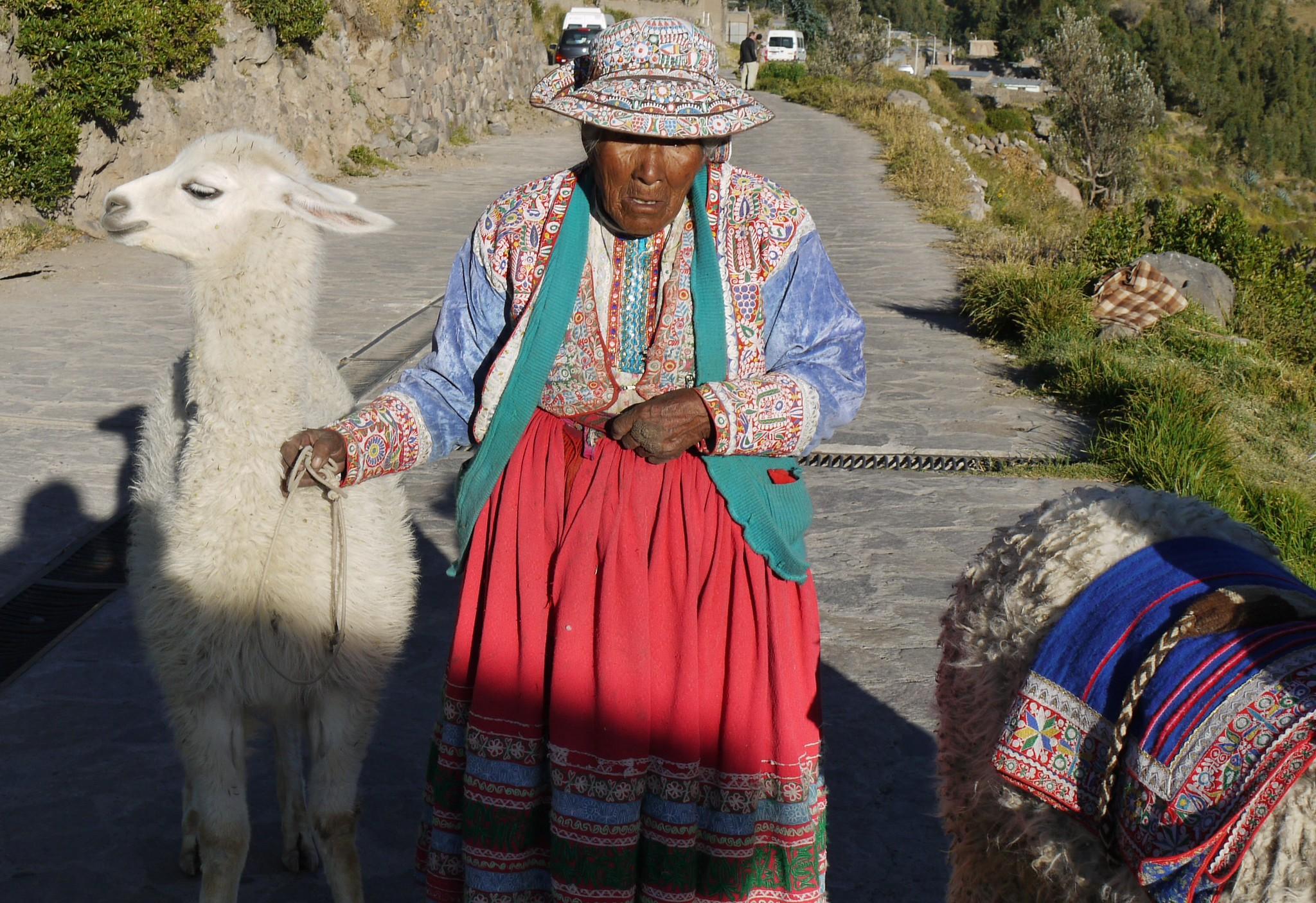 Alpaga et femme en habits traditionnels