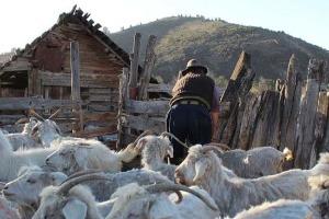 Patagonie_chez_L habitant_gaucho BARILOCHE ARGENTINE