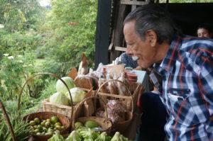 agricultura-costa-rica