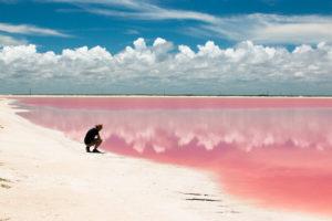 Les marais salants roses du Mexique - les réserves naturelles du Yucatán