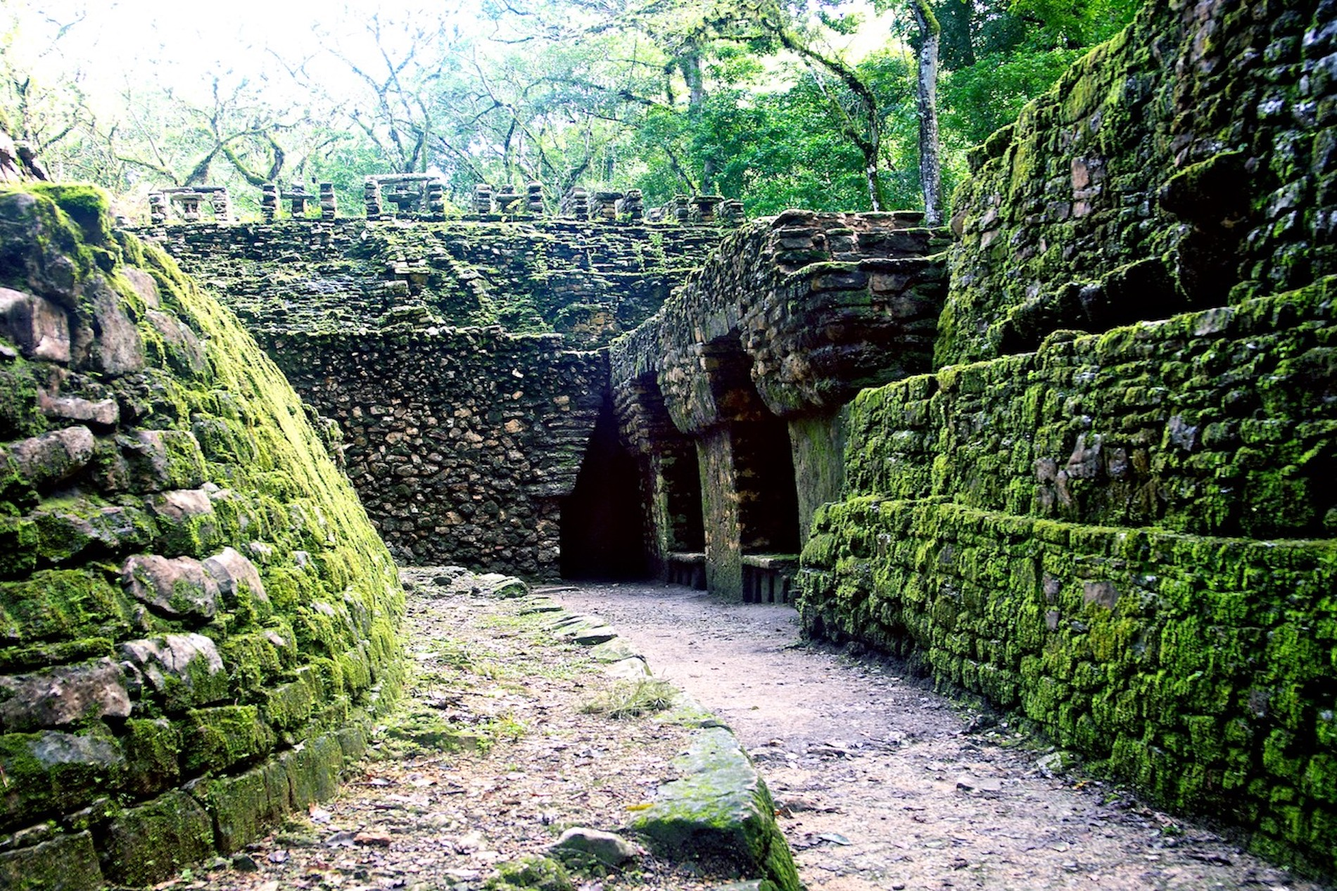 ruines-jungle-yaxchilan