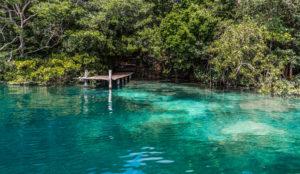 jungle-ponto-bacalar-lagune-circuit-15-jours-au-yucatan