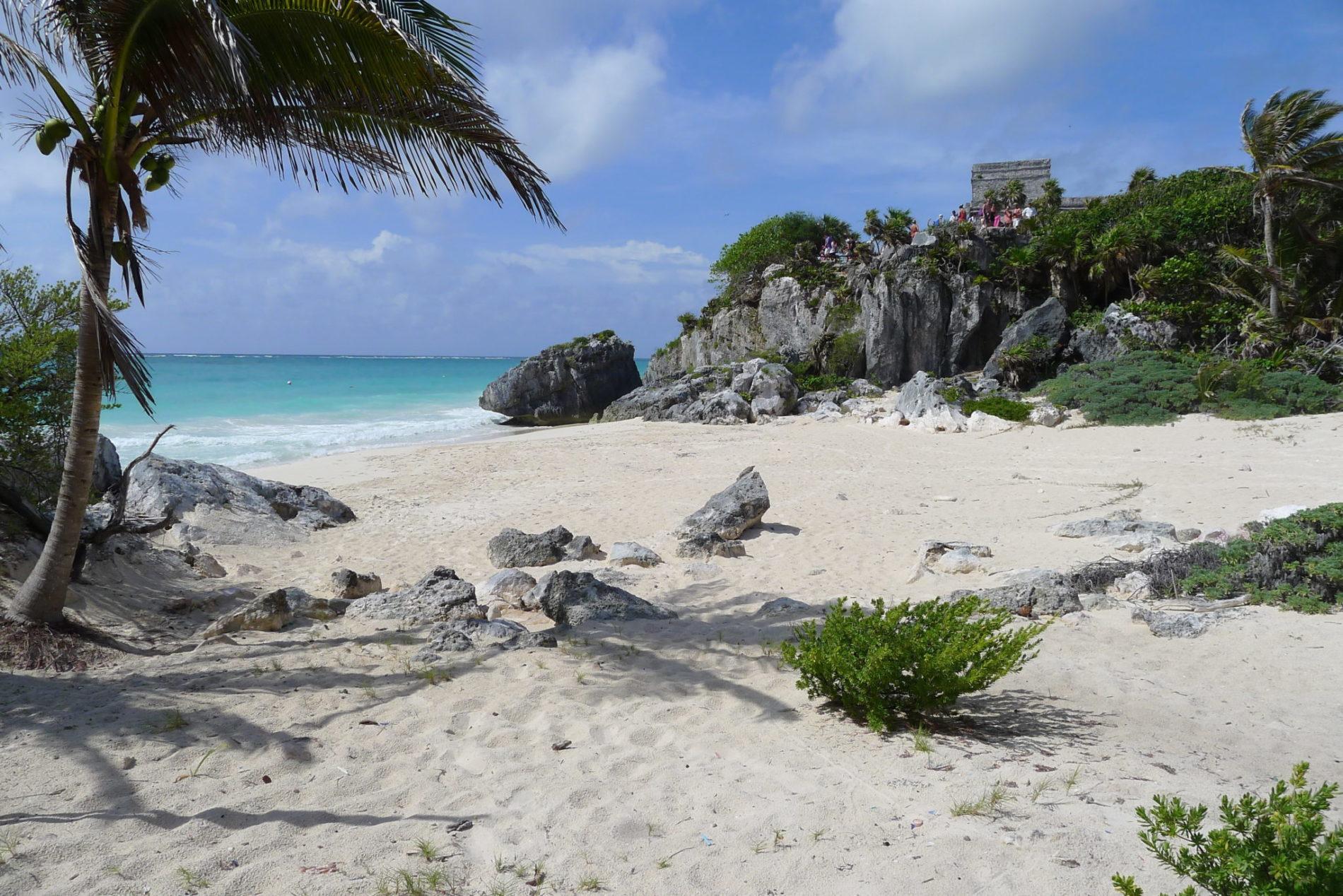 plage-sable-blanc-palmiers-tulum-yucatan