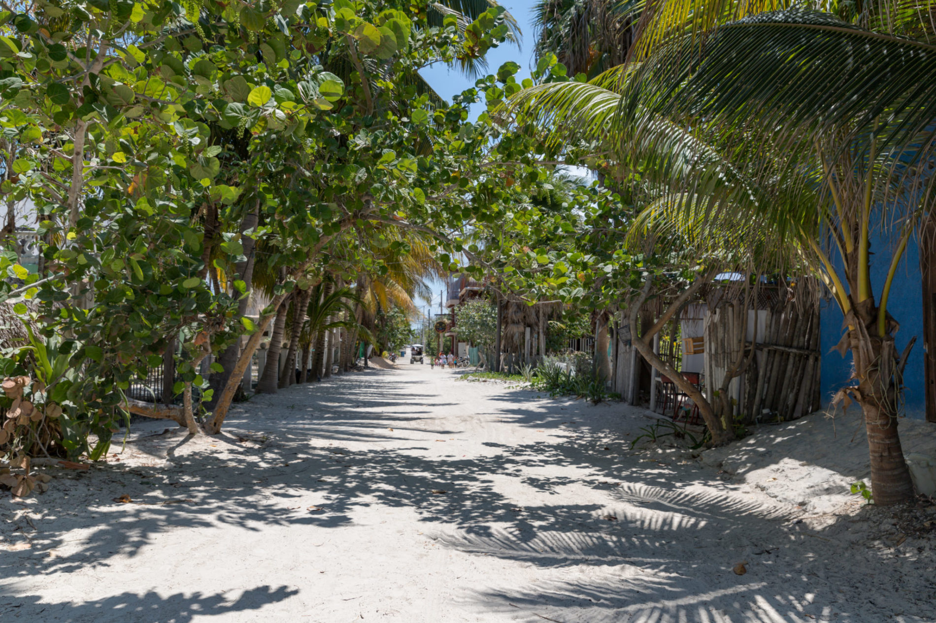 rues-holbox-sable-arbres-circuit-yucatan