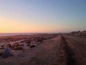 Visiter le désert d'Atacama, le Parc Llanos de Challe, et ses fleurs violettes, Chili