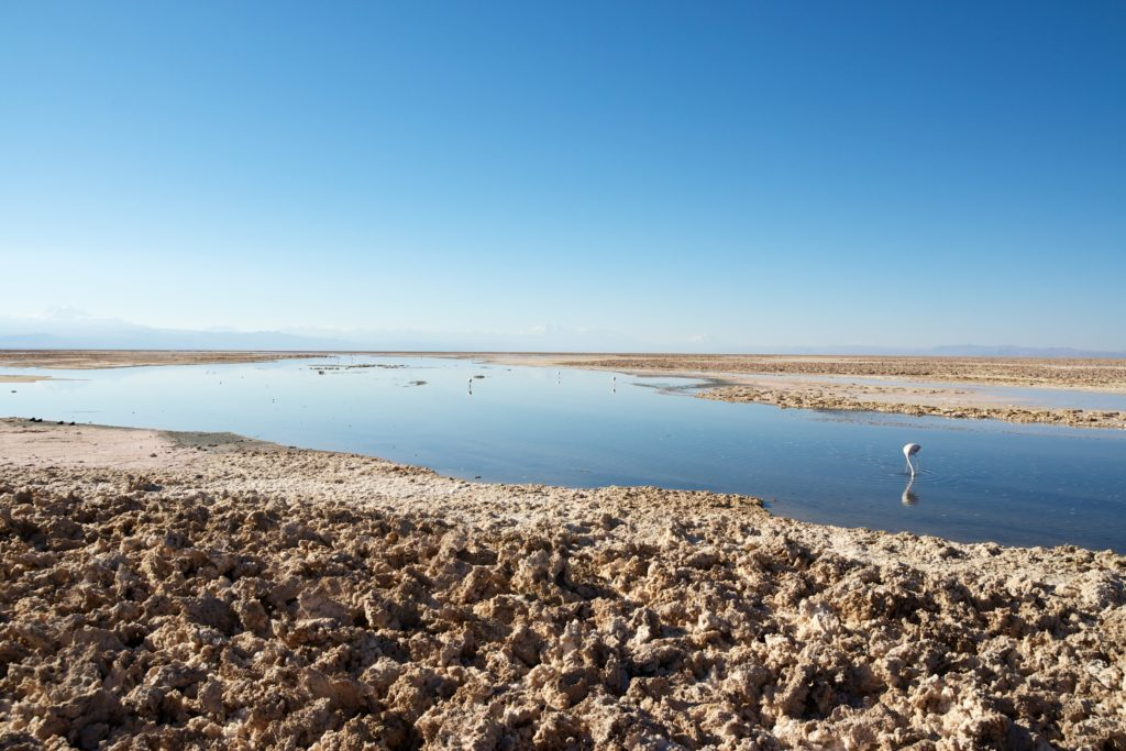 Le pays des Lickan Antay : Salar d'Atacama