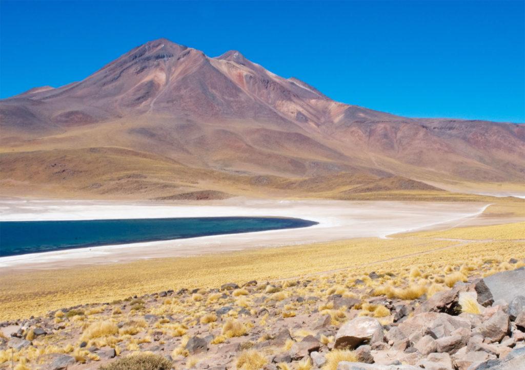 Visiter Atacama : La Laguna de Chaxa