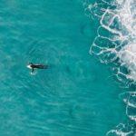 Punta de Lobos - surf Chili