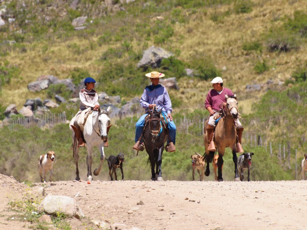 Balade à cheval en Patagonie