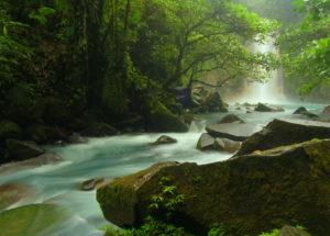 Rivière parc national Tenorio