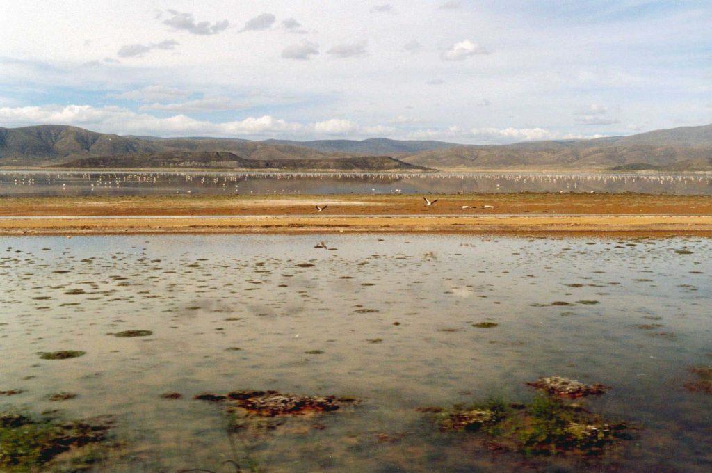 lac Poopò en Bolivie