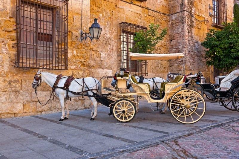 Explorer l'Andalousie : il s'agit cheval traditionnel et chariot à Cordoue.