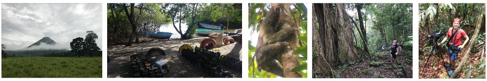 Frise photo de Patrick - Voyage Nature au Costa Rica