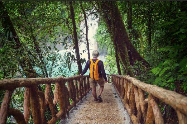 Voyage nature au Costa Rica : la jungle