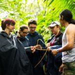 Découverte de la jungle au Costa Rica