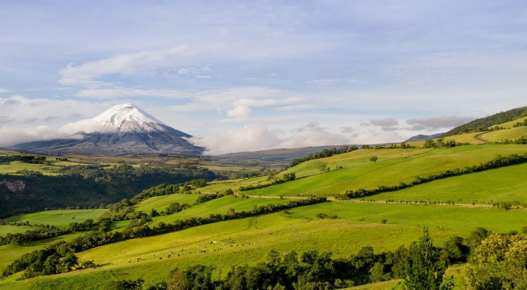 Vue sur le Cotopaxi, un des incontournables de l'Equateur.