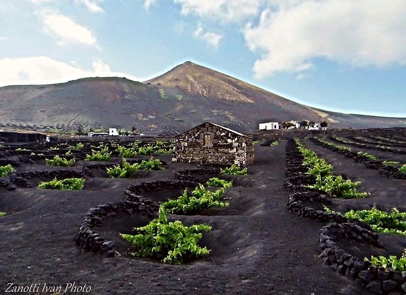 Magnifique paysage de volcan sur la vallée de La Geria à Lanzarote